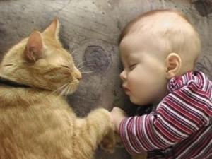 bambini-e-animali-benefici-e-regole-1