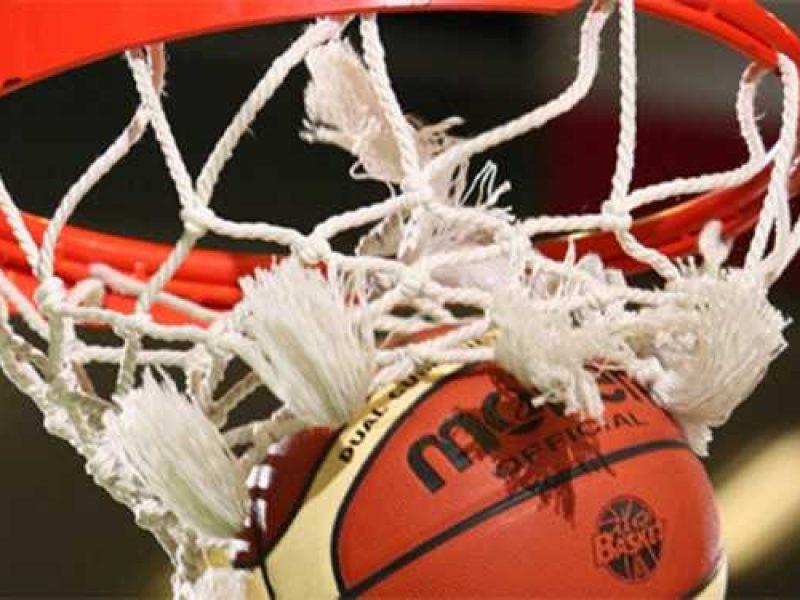 basket,
