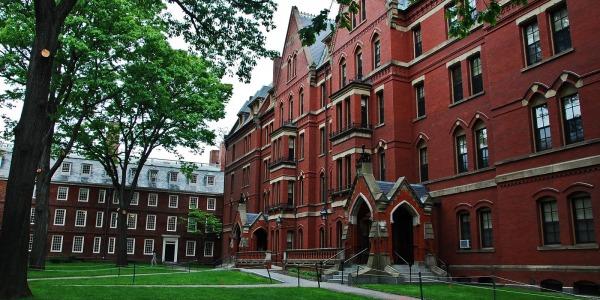 Allarme bomba ad Harvard | Evacuati quattro edifici dell'Università