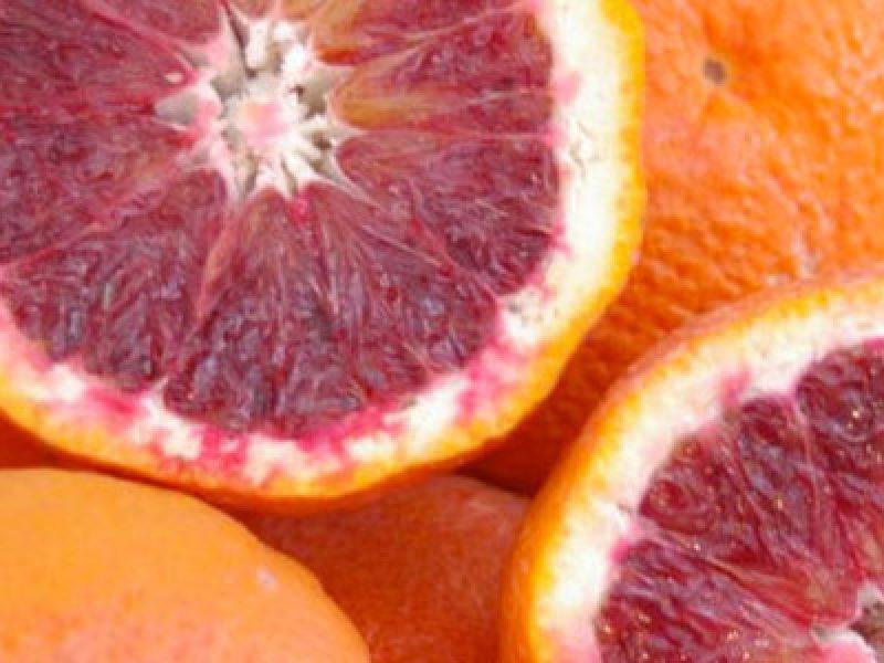 arance-sanguinelle esportate in giappone