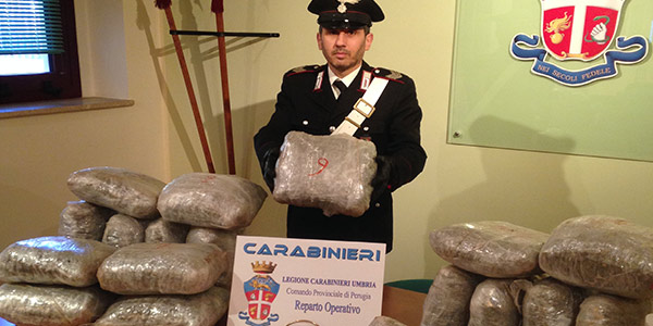 Maxi sequestro di droga in un bosco vicino Perugia | I carabinieri hanno recuperato 40 chili di marijuana