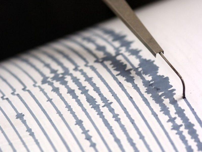 terremoto 29 agosto 2015 ore 22.25 sicilia provincia di trapani nessun ferito