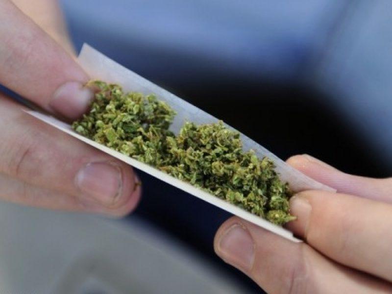 Cannabis discussione alla camera il 25 luglio sono 218 for Quanti sono i deputati alla camera