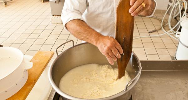 Brescia, formaggio prodotto con latte infetto | Trenta indagati tra allevatori e titolari di caseifici