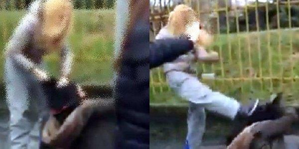 Bullismo, filmato choc su Facebook  | Due ragazzine si picchiano per il fidanzato