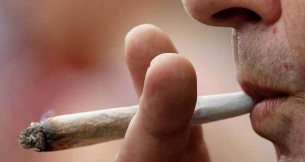 Italia seconda in Europa per consumo di cannabis