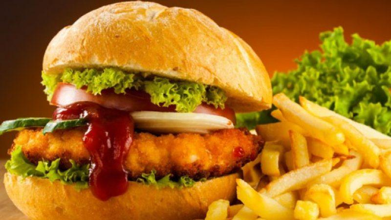 Il cibo spazzatura favorisce la pigrizia e rallenta le funzioni del cervello