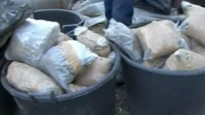A Bari il più grande deposito di droga del Sud | Sequestrati oltre 8 quintali di stupefacenti