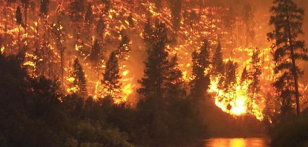 Continuano gli incendi nel Palermitano | Le fiamme divampano a Bagheria, Monreale e Giardinello