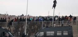danimarca migranti, Demetrios Papademetriou, immigrazione, immigrazione Ue, legge anti-immigrazione, migranti, migranti ue, politiche migratorie, Ue
