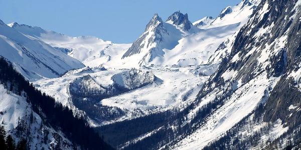 Ghiacciai dell'Antartide, l'allarme del Wwf | Si sono ridotti dell'87% in 50 anni