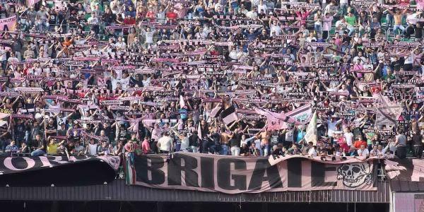 Il Palermo frena al Barbera, pari per 2-2 con il Carpi