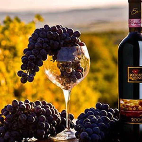 Sequestrate 30 mila bottiglie di falso Brunello | Scoperta una maxi frode in Toscana e Umbia