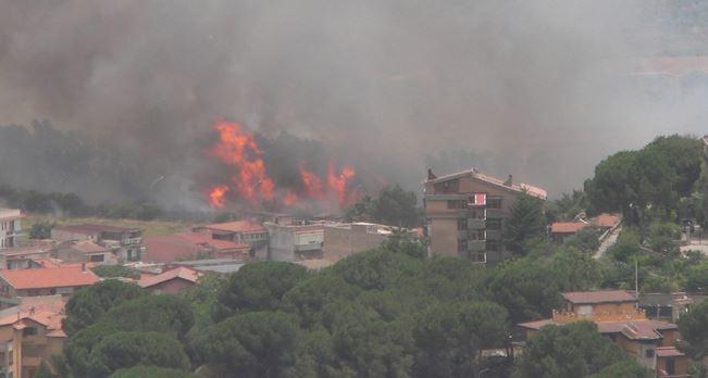 La città di Palermo investita dalle fiamme | Brucia lo zootecnico, paura in molte zone /FOTO