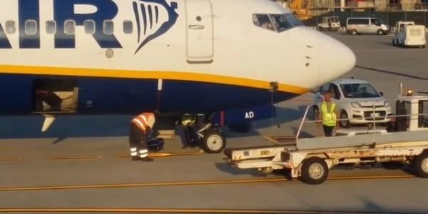 Filma bagagli 39 lanciati 39 nella stiva dell 39 aereo ryanair for Cane nella cabina dell aereo