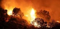 Bormes-les-Mimosas, evacuazione Francia incendi, incendi Bormes-les-Mimosas, incendi Francia, incendi Saint Tropez