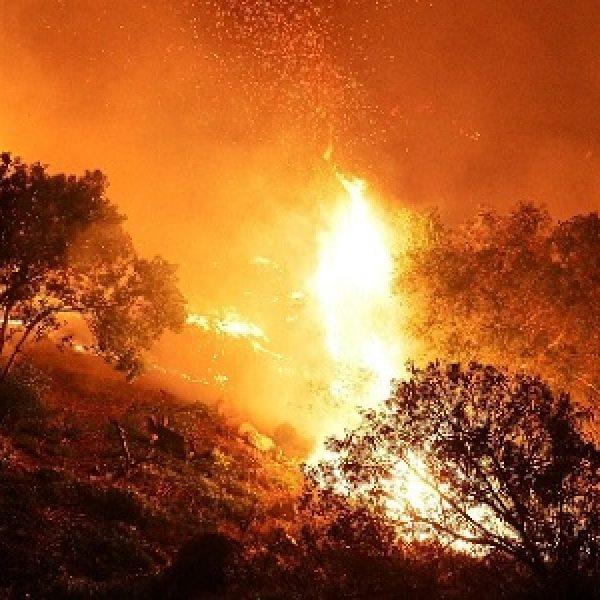 Calabria infernale, segnalati oltre 46 roghi | Il presidente Oliverio chiede aiuto all'esercito