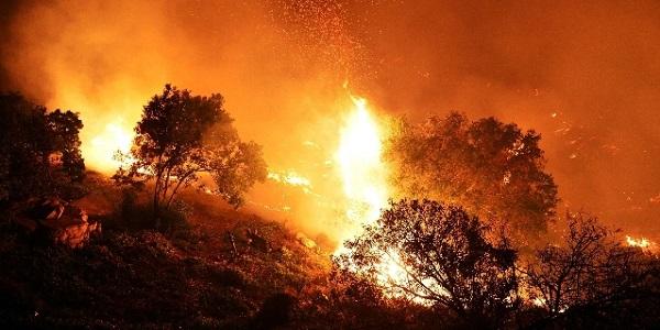 Sicilia, la riserva dello Zingaro brucia ancora | Andati in fumo oltre 600 ettari di vegetazione