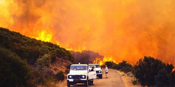 Allarme incendi in Sardegna, fiamme da 20 metri   In fumo mille ettari tra Sulcis e Medio Campidano