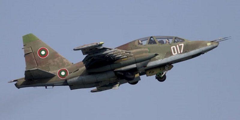 Abbattuti due caccia dopo beoing si24 for Cane nella cabina dell aereo