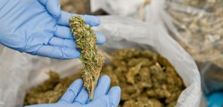 droga, narcotraffico, arresti bari