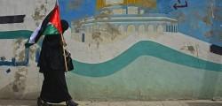 gaza, tregua, israele hamas accordo, proposta egiziana, al via soccorsi, al via aiuti umanitari