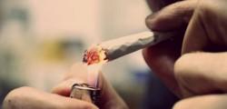 cresce-il-consumo-di-cannabis-uno-su-quattro-ne-fa-uso