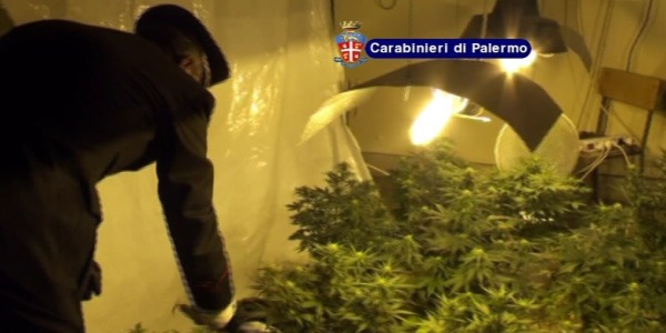 "Un ex convento usato come serra per la marijuana | Sequestrate 25 piante e dosi di cocaina /<u><b><font color=""#343A90"">VIDEO</font></u></b>"