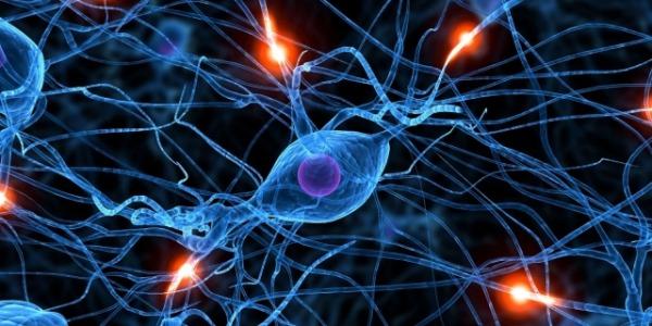 Morbo di Parkinson, onde sonore al cervello per combattere i tremori