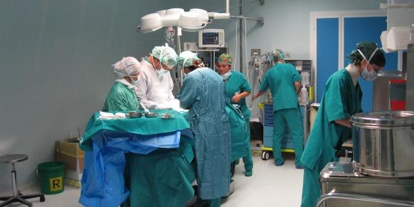 Donazione di organi, le italiane sono le più generose d'Europa