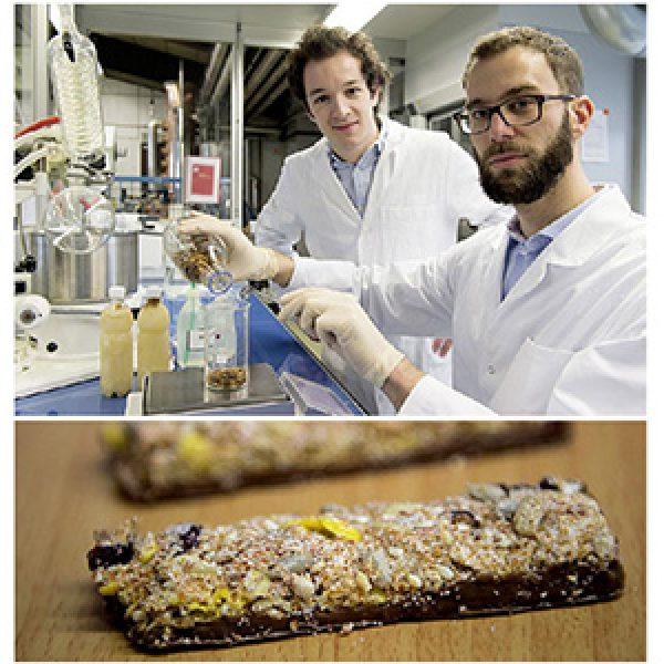 Il cibo del futuro? Una barretta energetica a base di vermi e insetti