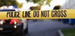 bimbo spara al fratellino, bimbo spara al fratello, bambino di tre anni spara al fratello, usa, tennesee, Hillsboro