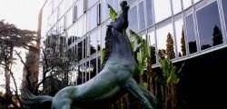 il cavallo della rai, riforma della rai