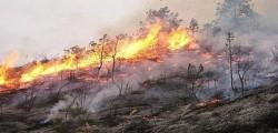 emergenza incendi, incendi italia, incendi Messina, incendi Puglia, incendi Roma, incendi vesuvio