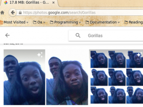 neri taggati come gorilla google photos
