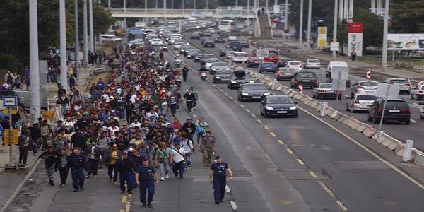 """Ungheria: """"Legge per punire le Ong che aiutano migranti"""""""
