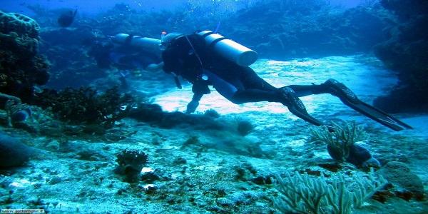 Genova, sub muore durante un'immersione   Stava visitando il relitto di un sommergibile