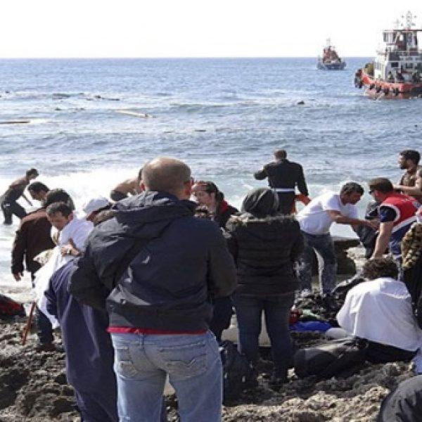 Migranti, Authority: