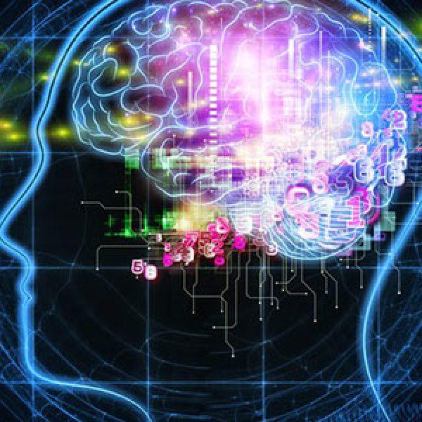 Cervelli ibernati, 10mila dollari per la vita eterna