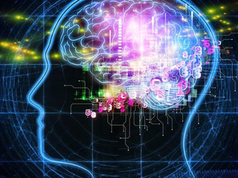 le risposte emotive allo stress causano problemi al cervello