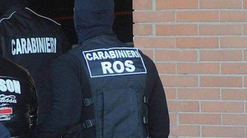 'Ndrangheta, traffico di droga: 12 arresti | Coca e hashish dalla Spagna al Piemonte