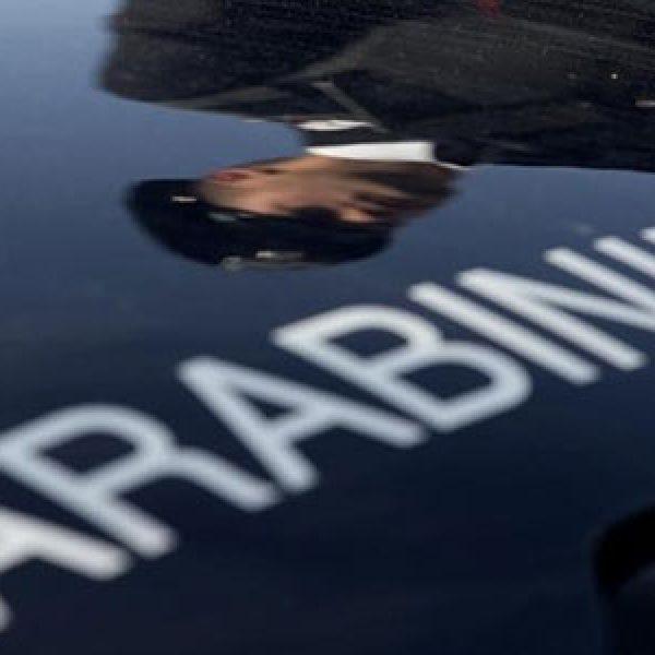 Messina, scoperta una maxi truffa all'Agea | Elargiti illegittimamente oltre 500mila euro