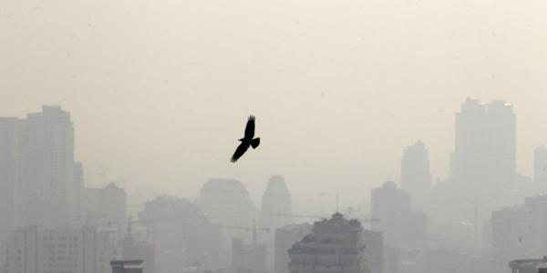 """Inquinamento, Onu: """"Gas serra in aumento nell'atmosfera"""""""