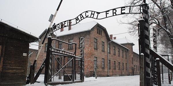 """""""I bimbi corrano ad Auschwitz"""", denunciato l'autore del post"""