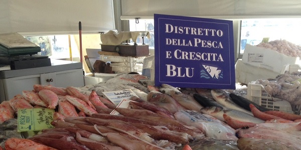 Distretto della Pesca, missione in Algeria e Tunisia