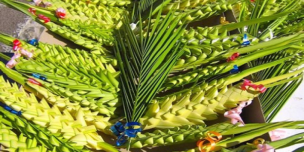 Il rito della 'Domenica delle Palme', significato e simboli