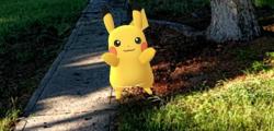 Pokemon Go, Pokemon Go divieto, pokemon Go codacons, pokemon go pericolo, pokemon go minaccia, pokemon guida, pokemon Go codice strada