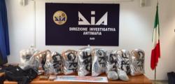 albanese arrestato Bari, arresti bari, arresti Dia Bari, arresto Mola di Bari, Bari, dia bari, droga Bari, droga Mola di Bari, due arresti Bari, due arresti droga Bari, Mola di Bari