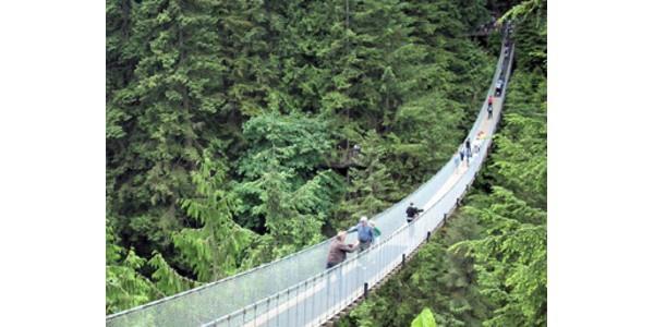 Colombia, il ponte sospeso precipita. Turisti cadono per 80 metri. 7 morti