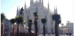 178 assunzioni milano, 178 figure comune Milano, cercalavoro, cercolavoro, lavoro comune Milano, lavoro Milano, trovalavoro, trovolavoro
